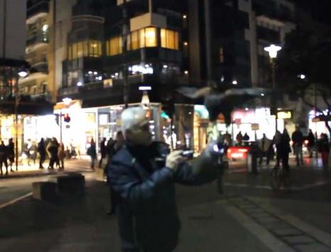 Γεράκι που ανέλαβε να απομακρύνει από τις πλατείες στο κέντρο της Λάρισας τα πουλιά που φωλιάζουν στα δέντρα!