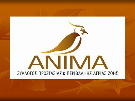 Απάντηση από την ΑΝΙΜΑ σε σχετική ερώτηση για το Παράνομο Εμπόριο Άγριων πουλιών.